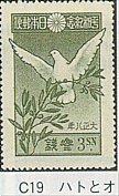 C-19.jpg