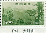P-41.jpg