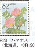 R-23.jpg